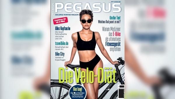 Neu im Zeitschriftenhandel