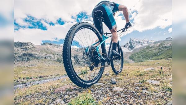 Viele Mountainbiker wollen den Gipfel offenbar noch mit eigener Muskelkraft erklimmen.