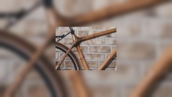 Bambusfahrräder - eine spannende Nische