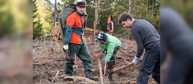 Der Dienstradanbieter unterstuetzt ein Bergwaldprojekt in Niedersachsen.