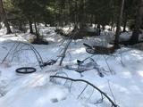 In die Enge getrieben, entledigten sich die Langfinger im Wald ihres Diebesgutes.