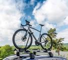 Das erste gemeinsame Modell ist ein Endurance Bike für die Straße